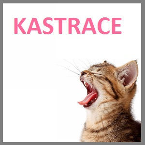 1 KASTRACE